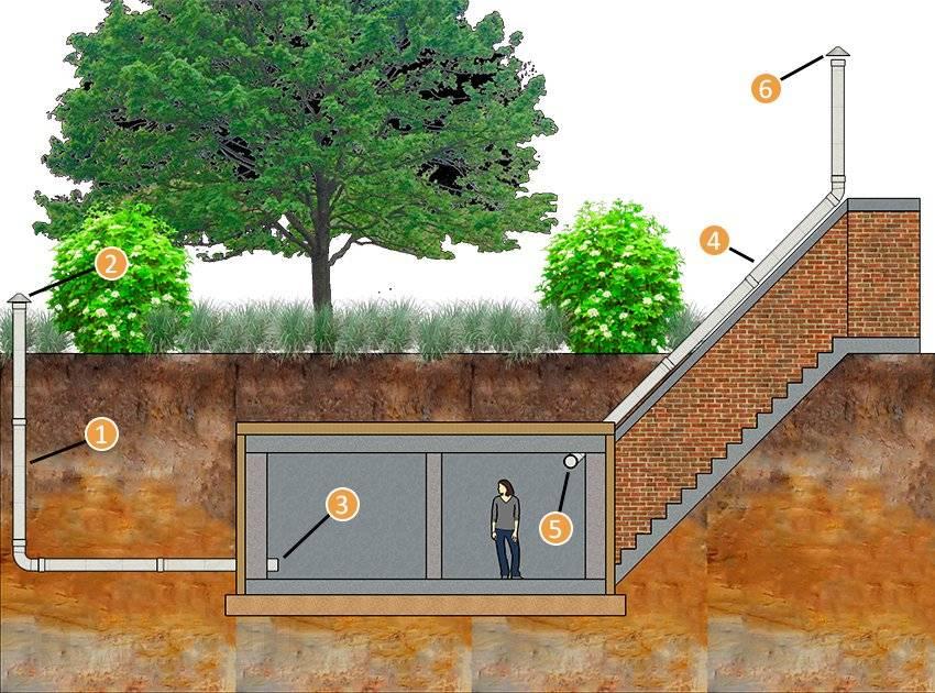 Для чего нужен подвал в многоквартирном доме и как его можно использовать