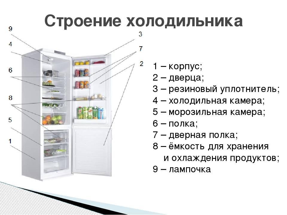 Электрическая схема холодильника: устройство и принцип работы различных холодильников