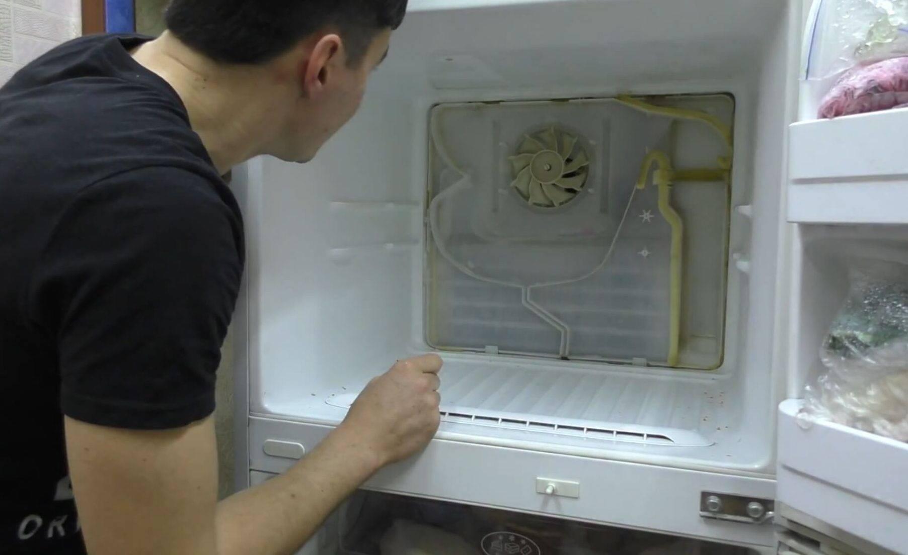 Диагностика причин, почему течет холодильник, и способы устранения неполадок