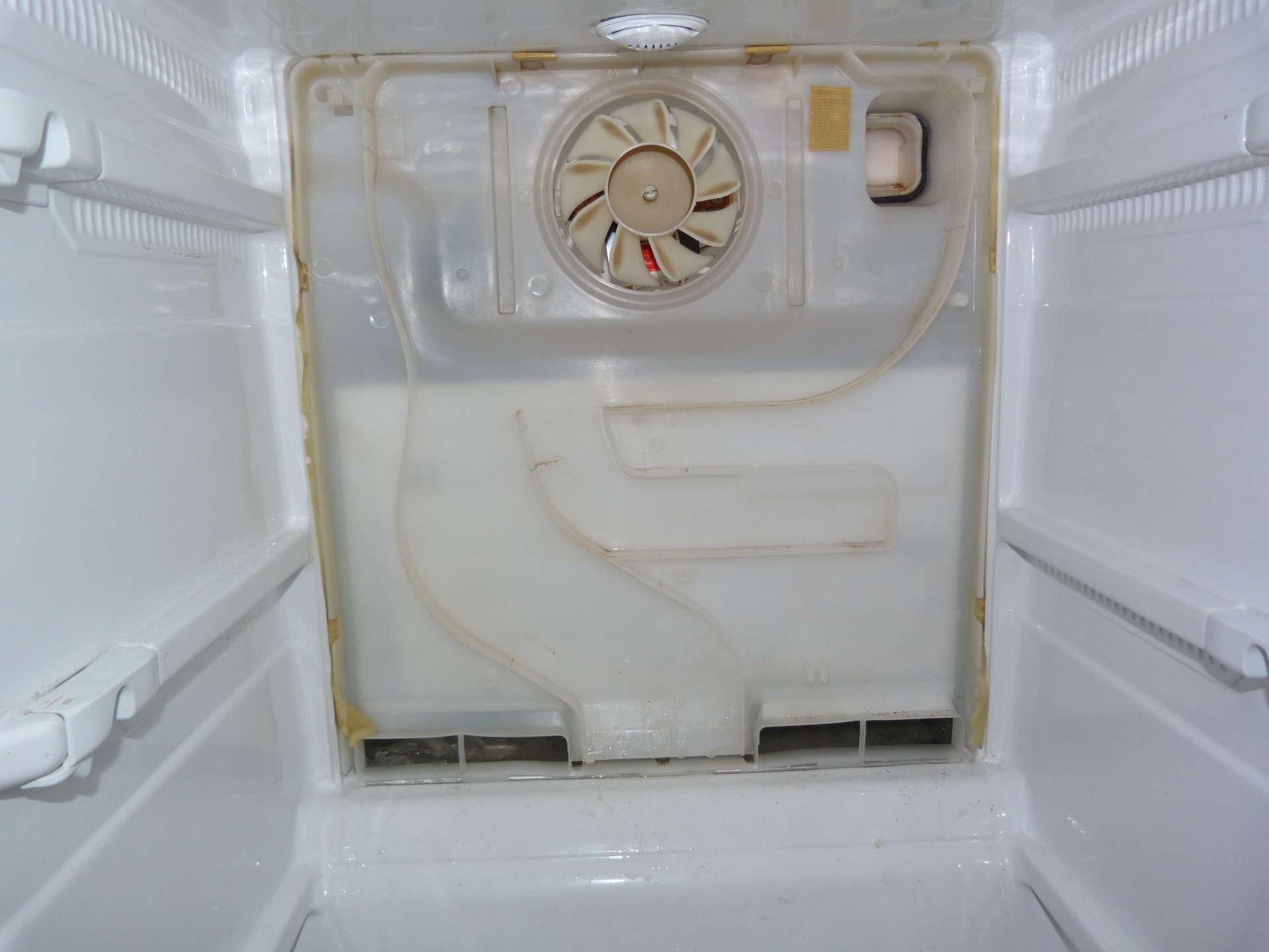 Конденсат в холодильнике — что при этом делать и как устранить?