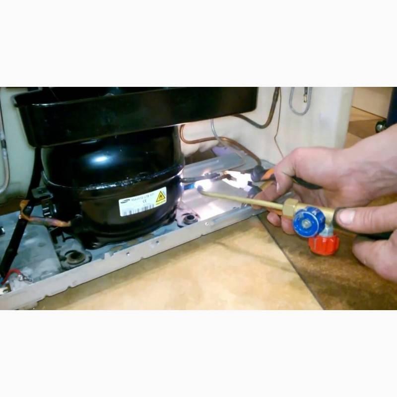 Ремонт холодильника стинол: неисправности stinol не работает или не морозит